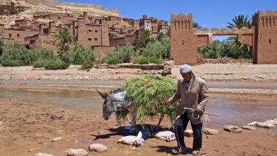 Ouarzazate, Marruecos. Excrusiones personalizadas.