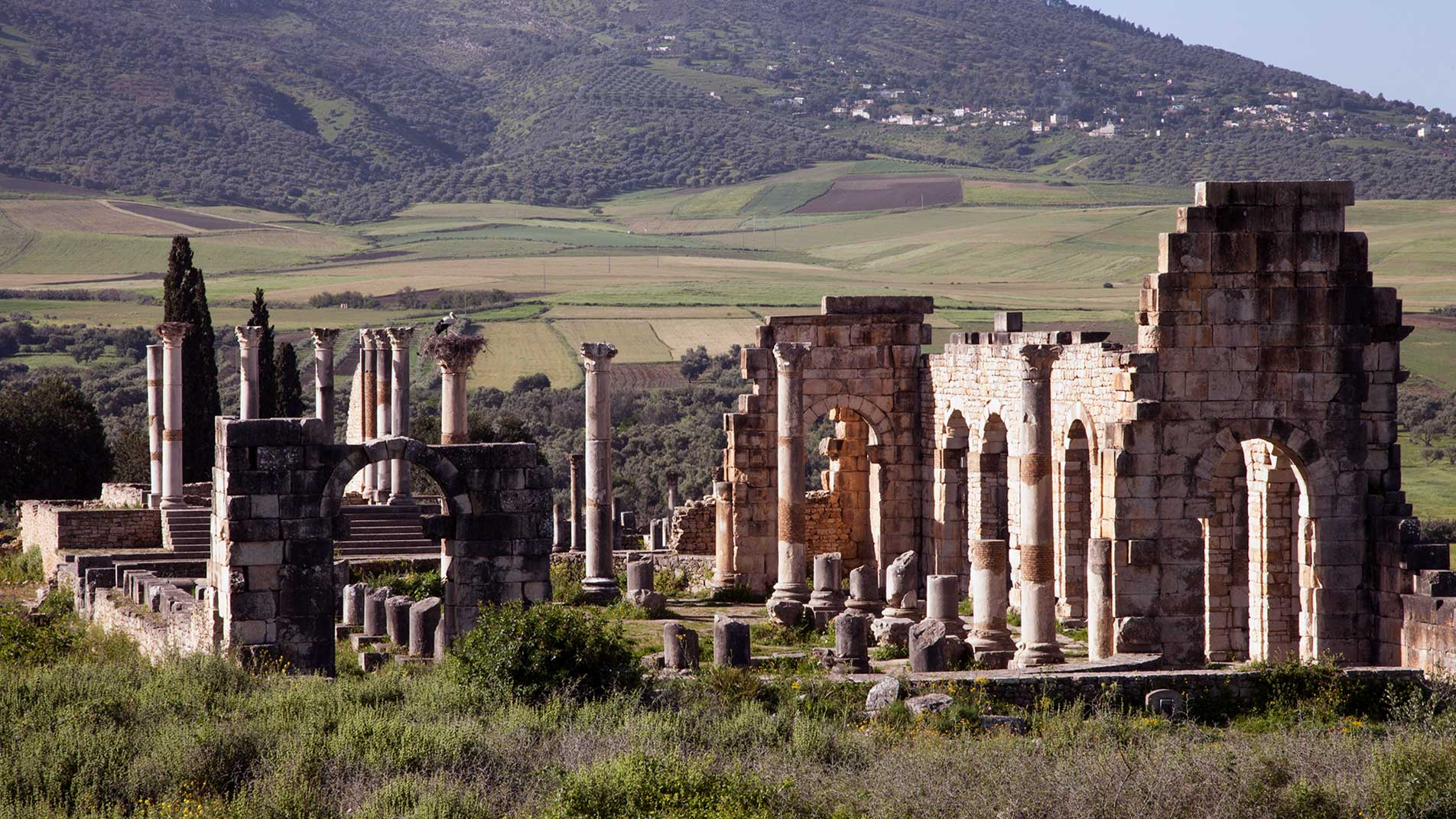 Excursiones a Volubilis, Marruecos