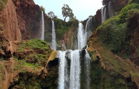 Escursiones a las cascadas de Ouzoud, Marruecos.